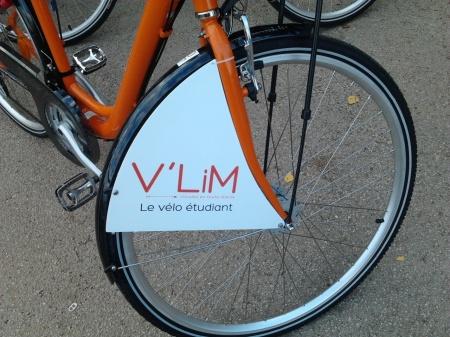 V'LIM